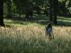 lubica_christophory_hukvaldy_2007_in_grass.jpg